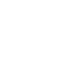 10.9 Synergy white logo